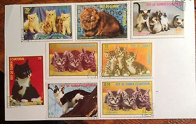 postage stamps Equatorial Guinea lot of 8 CATS old used
