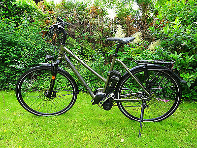 raleigh stoker s10 e bike s pedelec 17 ah 45 km h 100. Black Bedroom Furniture Sets. Home Design Ideas