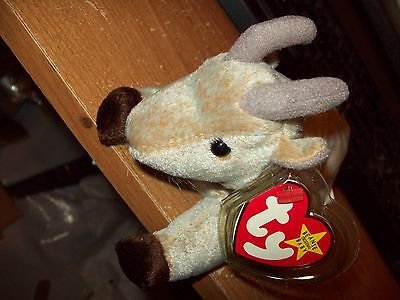Ty Beanie Babies Collection  Goatee The Goat Dateof Birth 11-04-1998 Retired
