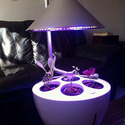 6Plants Hydroponic Grow System Free Shipping USA Seller Customized For Dry Herb