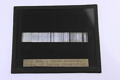 Astronomy Flash Canis Minoris Spectrum YERKES OBSERVATORY Magic Lantern Photo