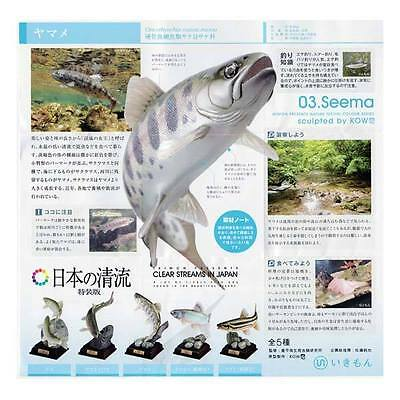 Kitan Club Clear River Freshwater trout Fish Mini Figurine Figure set 5pcs NEW