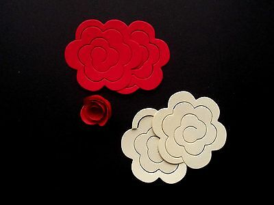 Spiral Quilling Paper - perfect for making flowers