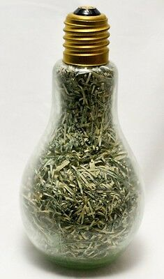 Shredded US Currency Confetti In A Large Novelty Lightbulb Desk Item Paperweight