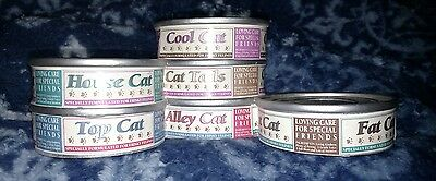 Calico Kittens  Rare Cat Food Display MINT