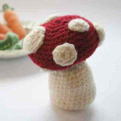 Cute Toadstool Crochet Kit