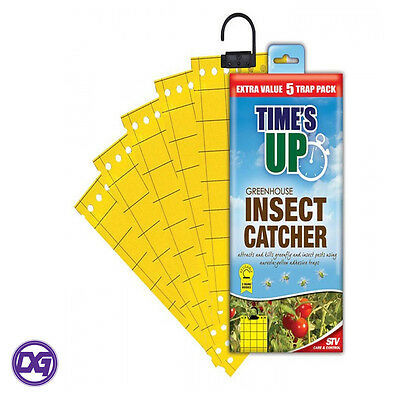 Times Up Greenhouse Insect Catcher extra value 5 Trap Pack