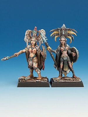Freebooters Fate - Amazons - Temple Guards