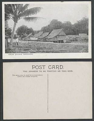 Singapore Old Postcard Malay Village Native Houses Huts on Stilts and Palm Tree