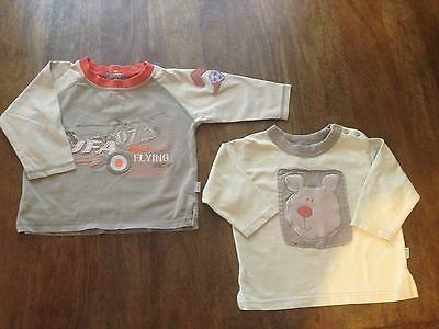 Lot of 2 boys long sleeve tops by Pumpkin Patch size 0