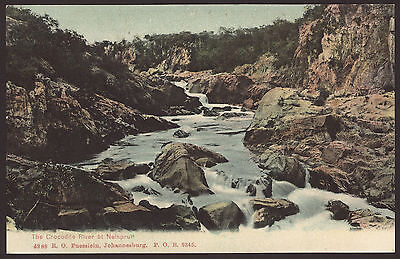 South Africa. The Crocodile River at Nelspruit. Unused Vintage Printed Postcard