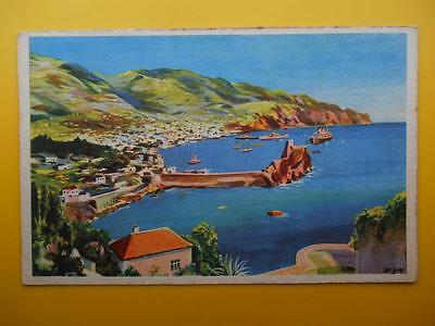 Harbour FUNCHAL Madeira Portugal *Vintage* Artist Drawn c1940s Standard Size