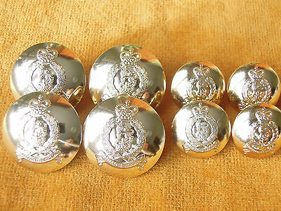 Set of 8 Anodized British Adjutant General Corps Uniform Buttons #534