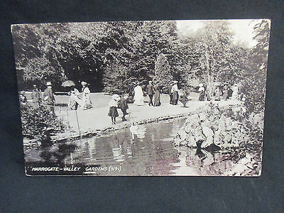 Vintage Photographic Postcard c.1907 Harrogate Valley Gardens  - Used