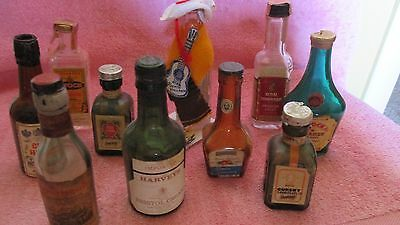 10 Different Empty Minature Liquor Bottles