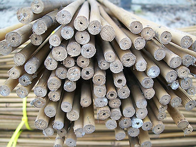 3ft long bamboo canes. 90cm bamboo sticks, garden plant supports. Bundles of 100