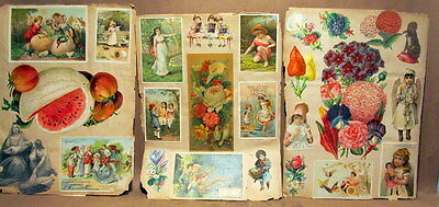 ANTIQUE TRADE CARDS ON 6 ANTIQUE SCRAPBOOK PAGES lot b