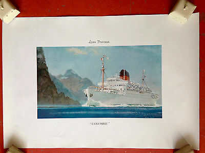 AFFICHE  ANCIENNE vintage  ORIGINALE  FRENCH LINES paquebot Colombie