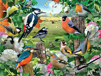 BIRDWATCHING FULL DIAMOND PAINTING KIT 5D CROSS STITCH MOSAICS 25x20CM