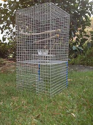 Myna Bird Tower Trap (Indian Myna, Mynah) Catches Starlings & Black Birds too