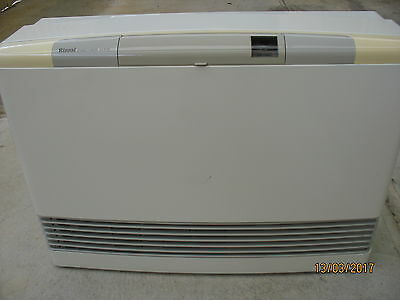 Rinnai Energy Saver 431FTR Natural Gas Heater