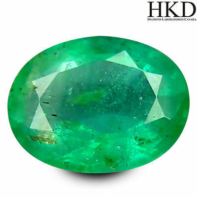 0.53ct HKD Certified Terrific Oval Cut 6 x 5 mm Colombia Emerald Loose Stone #7