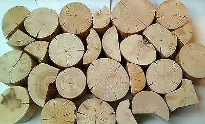 Decorative Display Wood Logs, Split and Whole, clean, dry, peeled - 2nds
