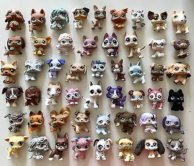 🐶Littlest Pet Shop🐶 AMAZING DOG LOT 51 Dogs ✨RARES!!!✨Great Variety✨MUST SEE