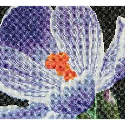"Crocus On Aida Counted Cross Stitch Kit 5.75""X5.5"" 18 Count 499994662347"