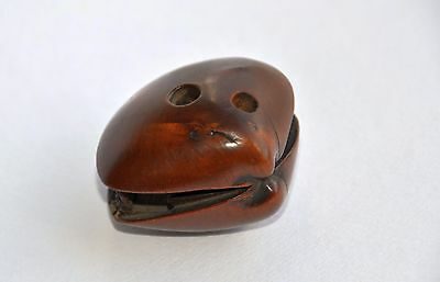 Antique Netsuke of Village inside Clam with a lot of details Meiji period