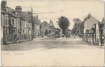 Hull,spring Bank  With Trams, -Rare