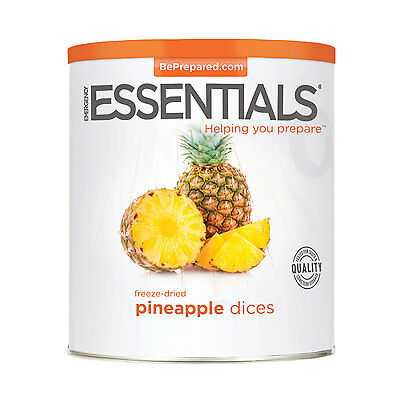 Freeze Dried Pineapple Dices can