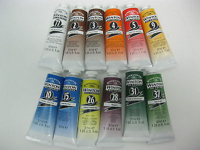 Lot Of 12- Winton Oil Colours 37Ml Tubes  Brand New