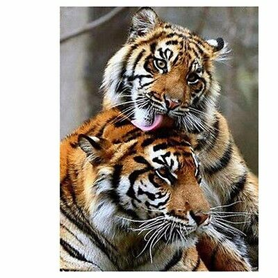 5D 3D Tigers Embroidery Cross stitch Mosaic Diamond painting kit Small