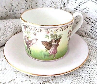 Wren Flower Fairies Of The Spring Bone China Cup & Saucer 1997 - Perfect