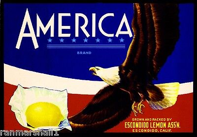 Escondido America Eagle #2 Lemon Citrus Fruit Crate Label Art Print