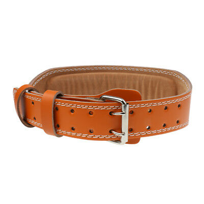 Brown Leather Weight Lifting Belt Gym Power Training Lumbar Back Support L