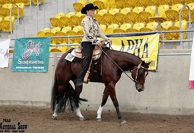 western  Show Saddle Jeweled model ri224