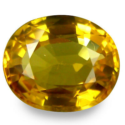 1.775Cts  Sublime Quality Luster Yellow Natural Sapphire Oval Loose Gemstones