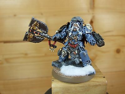 Warhammer Space Wolves Lord Well Painted (320)