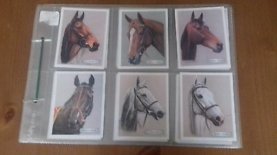 GDS horse racing cards