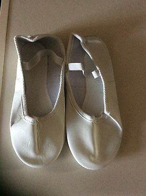 Girls Ballet Shoes Size 3.5