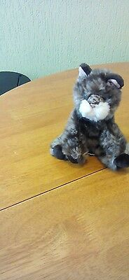 Cat Beany Soft Toy