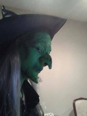 small / child size witch nose and chin set . latex wizard of Oz
