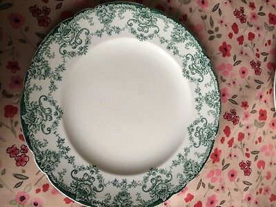 Vintage John Maddock and Sons Ltd Vitreous Sandon dinnerware