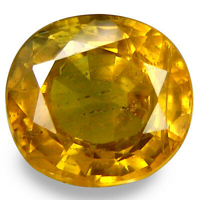 1.755Ct Stupendous Stunning Luster Yellow Natural Sapphire Oval Loose Gemstones