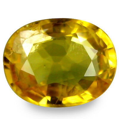 1.365Ct  Spectacular Stunning Luster Yellow Natural Sapphire Oval Gemstones