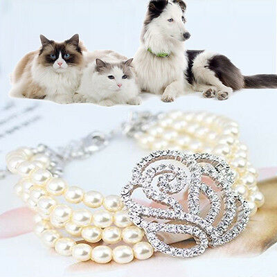 Fashion Dog Pet Jewelry Puppy Necklace Pendant Cat Identity Pearl Collar Hot