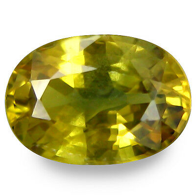 1.540Cts Magnificent Amazing Green Yellow Natural Sapphire Oval Loose Gemstones