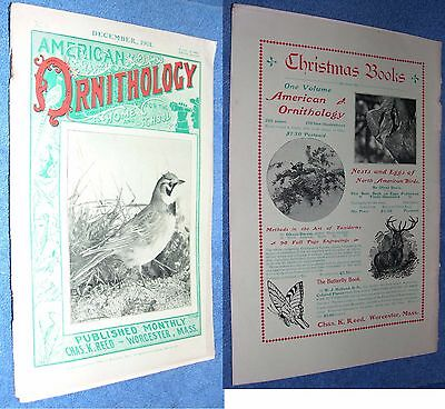 December 1901 American Ornithology For The Home and School by Chas. K. Reed